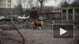 У элитного ЖК в центре Петербурга образовалось непроходи ...