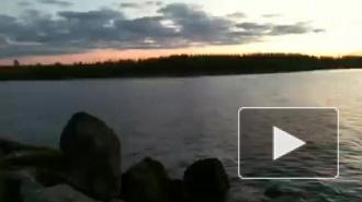 Сердюков и Васильева пытались продать берег Финского залива