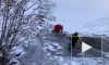 Видео: В Колорадо спасли оленя, который провалился под лед