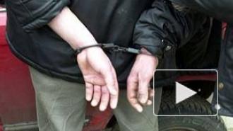В петербургском метро задержанный избил полицейского