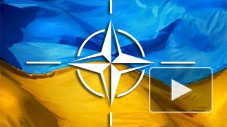 Ситуация на Украине сегодня: Рада рассматривает предложение о вступлении в НАТО