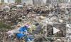 Экоактивисты нашли три незаконные свалки в Невском районе Петербурга