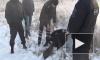 Ангарскому маньяку предъявят обвинение еще в 60 убийствах