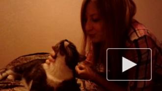 #19 Признание любимому Коту!