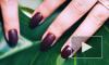 Эксперты рассказали о смертельной опасности лака для ногтей