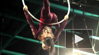 Цирк Дю Солей в Петербурге: секреты закулисья