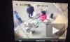В Екатеринбурге трое бульдогов напали на девочку с собакой