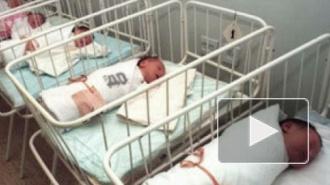 В Волгограде новорожденную Аленушку оставили в одной пеленке в кустах у автомойки