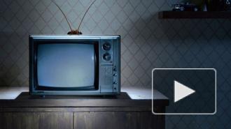 В доме на Васильевском острове, где погибла девочка-инвалид, ребенок размозжил себе голову телевизором