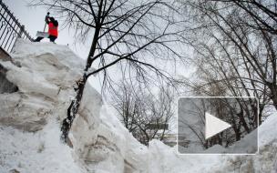 Синоптики назвали дату снежного апокалипсиса в Петербурге