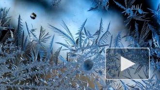 Гидрометцентр: к концу недели в большинстве регионов России ожидается похолодание