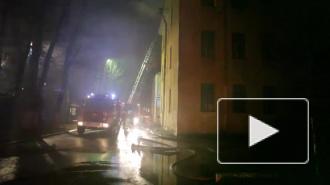 Три ребенка погибли в страшном пожаре в Новосибирской области