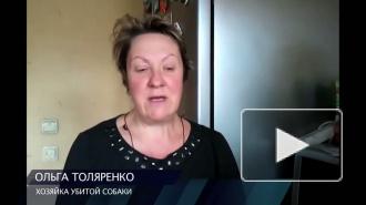 В Петербурге зарезали собаку на глазах хозяйки и гуляющих детей