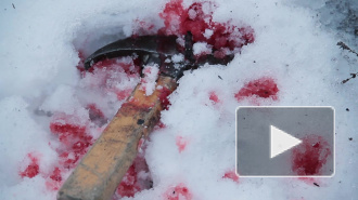 Безумная жестокость: почему сестра забила брата молотком?