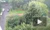 Тропический ливень с грозой накрыл Петербург: фото и видео из социальных сетей
