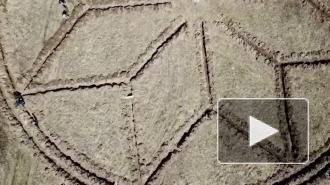 Геоглиф в Ленобласти будет видно из космоса