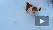 Скоростная снегоройка