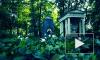 В Ночь музеев петербуржцев отправят на кладбище
