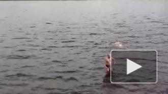 Закаленные петербуржцы открыли купальный сезон в Неве