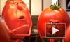В Роскачестве рассказали, как выбирать томатный сок