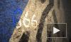 ДТП-666: На роковом отрезке КАДа столкнулись две иномарки