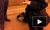 Окровавленный труп нашли на платформе метро Проспект Большевиков