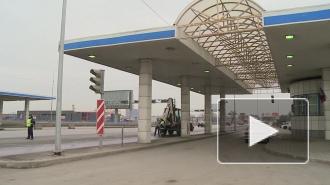 Сбитая машиной в Кронштадте девочка скончалась в больнице