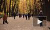 Дыхание Петербурга: самые интересные события недели