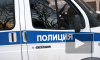 Петербуржец изнасиловал школьницу в подвале на улице Красного Курсанта. Девочка пошла в полицию спустя два дня