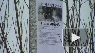 Родственники опознали найденный труп. Это действительно Алёна Щипина