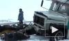 Юный хоккеист погиб в страшном ДТП в Татарстане