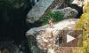 Россияне полгода смогут посещать Шри-Ланку по бесплатной визе