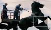 Чиновники обмыли коня в центре Петербурга в честь праздника реставраторов