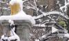Жуткая история на Урале: 12-ленюю школьницу зарезал ножом одноклассник
