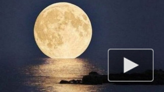 Cуперлуние в ночь на 11 августа, фото которого заполонили интернет, обрело свой хэштэг