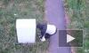 """Дорожный комитет намерен привлечь к ответственности """"светофорного маньяка"""" в Ломоносовском районе"""