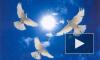 29 мая 2014 православные христиане празднуют день Вознесения Господня