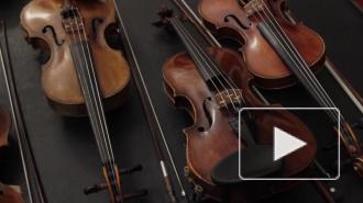 Филармонии подарили скрипку современного Страдивари
