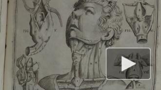 Самый древний из известных анатомических атласов был создан в Китае