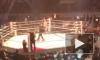 Видео: Шлеменко за 25 секунд нокаутировал в реванше американца Хэлси