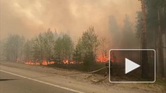 В Тюменской области из-за угрозы лесного пожара эвакуировали санатории