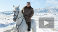 Ким Чен Ын устроил фотосет на белом жеребце