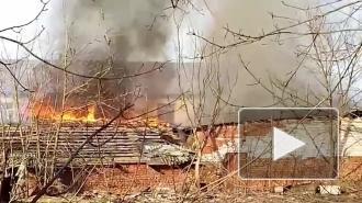 В Красном Селе сгорели несколько гаражей