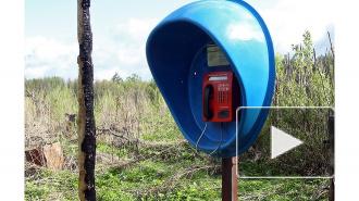 Звонки в Ленобласть могут стать еще дешевле