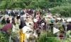 Видео из Индии: Автобус набитый пассажирами упал в ущелье, погибли 43 человека
