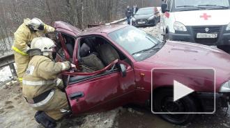 """Страшная авария на Гостилицком шоссе: """"Нексию"""" смяло, как консервную банку"""