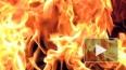 На Канонерском судоремонтном горящий мазут тушат по повы...