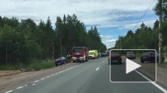 ВИДЕО: В жутком ДТП на Белоостровском шоссе погиб 4-летний ребенок