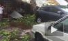 Появилось видео шокирующих последствий ливня с грозой в Петербурге