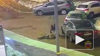 Москве задержан неадекват, убивший молотком случайного прохожего, приняв того за ведьму